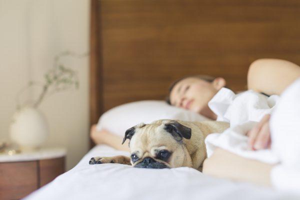 7 Sleep Tips for Nurses Working Night Shifts